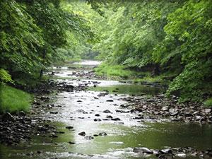 Tinicum Creek